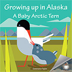 Cover image of A Baby Arctic Tern